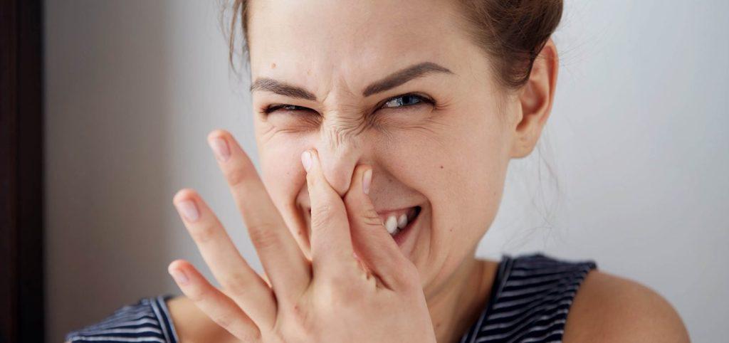 como quitar malos olores en el año