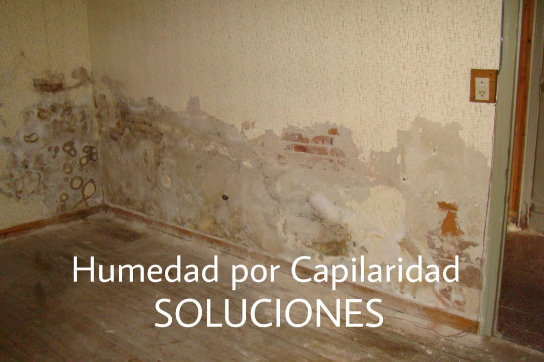 Humedad por capilaridad las 3 mejores soluciones - Humedad en pared ...
