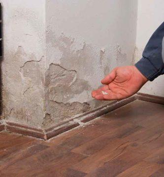 como pintar una pared con humedad