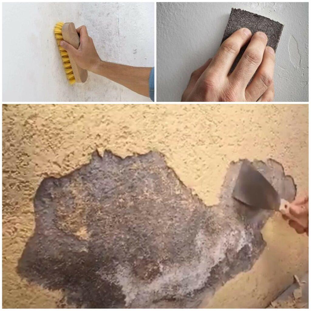 como quitar el salitre de las paredes