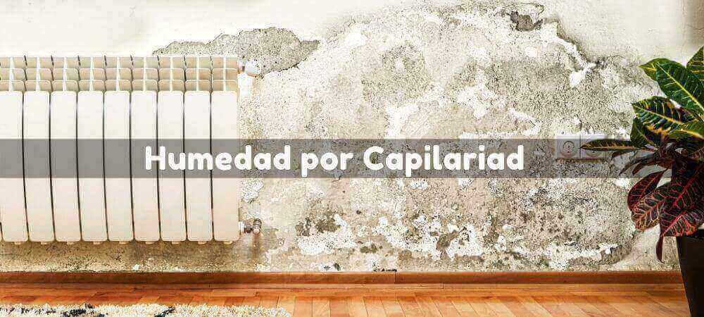 Humedad por Capilaridad